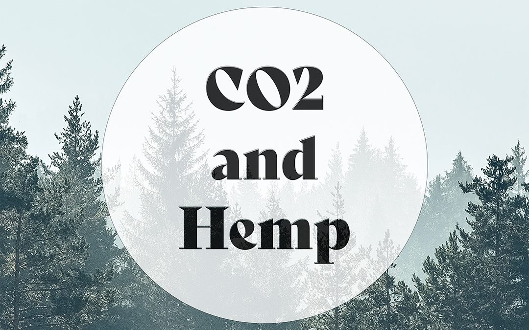 CO2 and Hemp:  Giving Mother Nature an Air Purifier